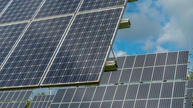 Panneaux solaires : toujours rentables pour les entreprises