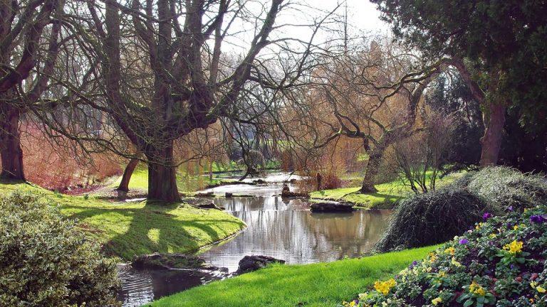 Aménager un parc ou jardin paysager en longueur : comment faire ?