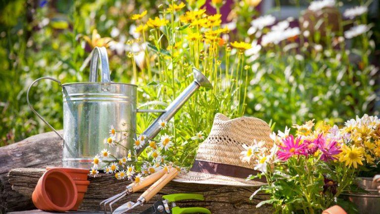 Jardinage : voici les 4 outils qui vous permettront de gagner du temps et de l'énergie