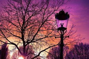 Créer un éclairage élégant dans son jardin grâce aux lampes exterieur design
