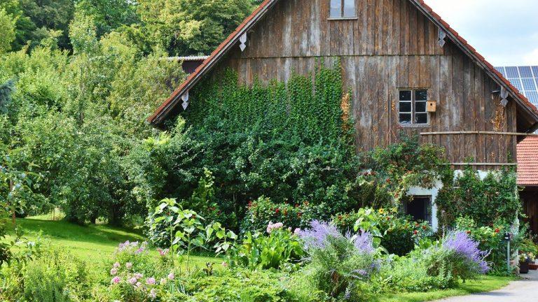 La maison de jardin en bois, la nouvelle tendance écolo
